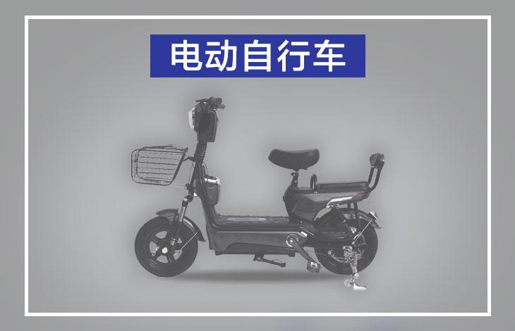 4bike-cover